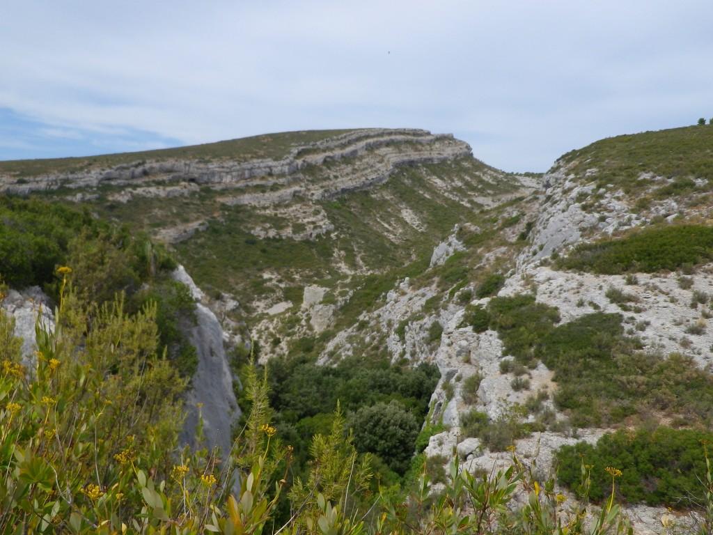 Les collines chères à Marcel Pagnol (photo perso)