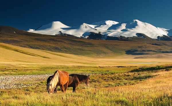 mongolie-paysages