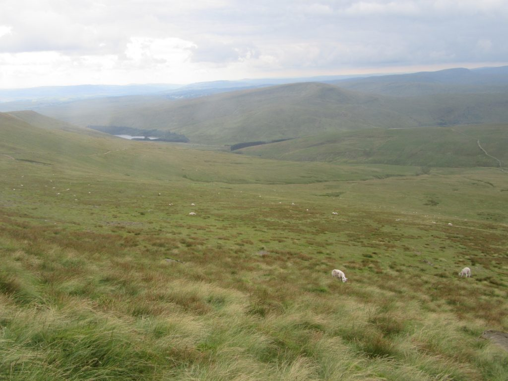 Parc National Brecon Beacons Pays de Galles