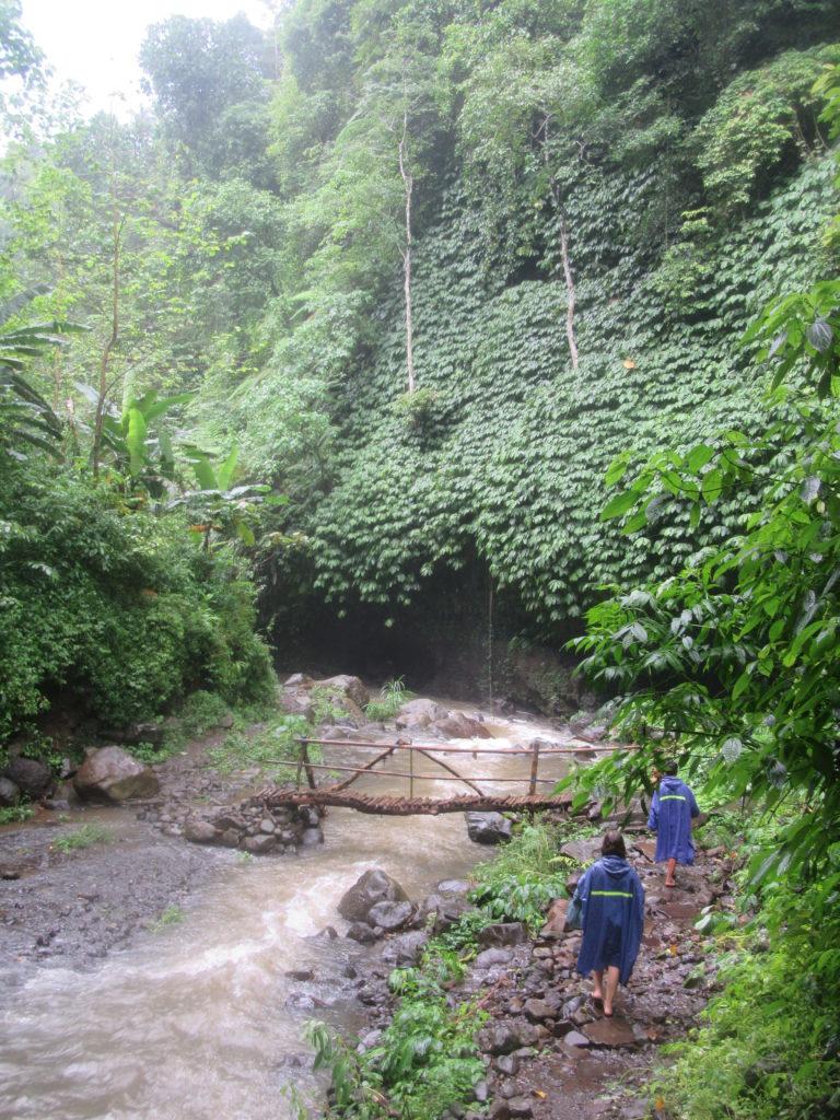 Cascades et jungle à Bali