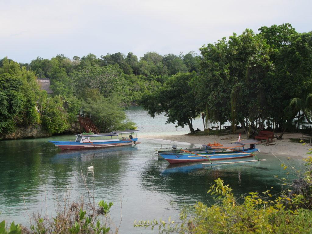 La Bomba Togian snorkeling Sulawesi