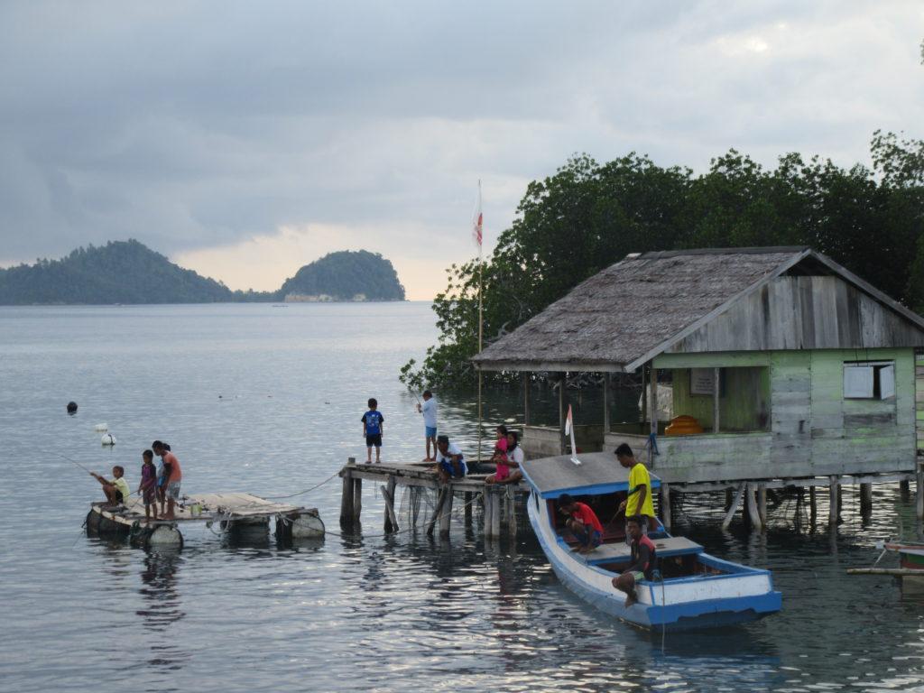 Togian pecheur Sulawesi