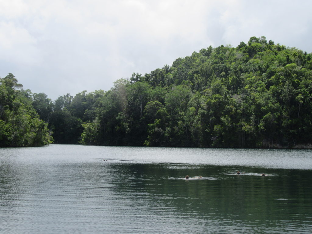 Lacs aux meduses togian