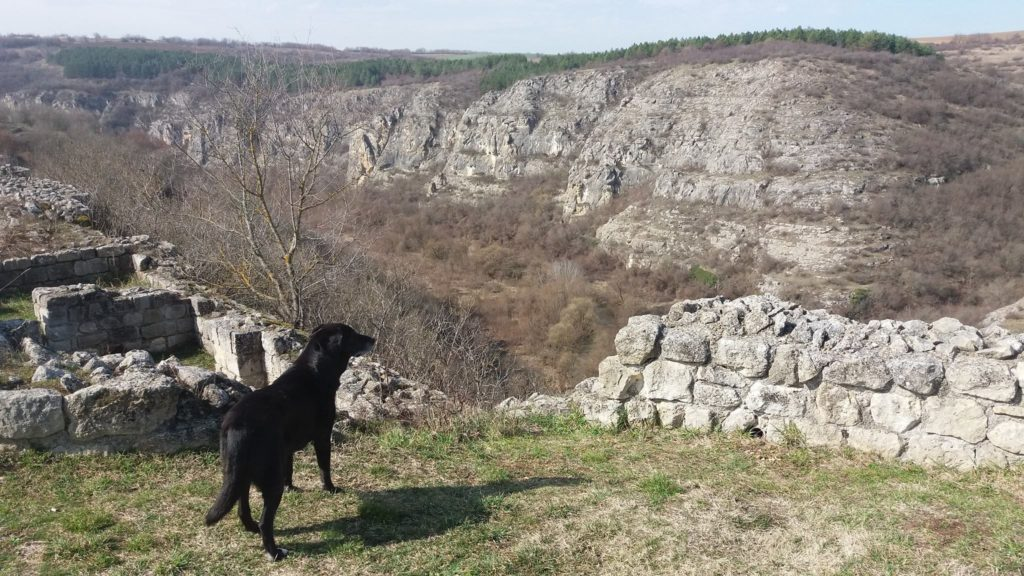 Bulgarie, voyage à vélo avec chien