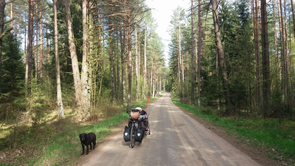 voyage à vélo en Europe avec son chien