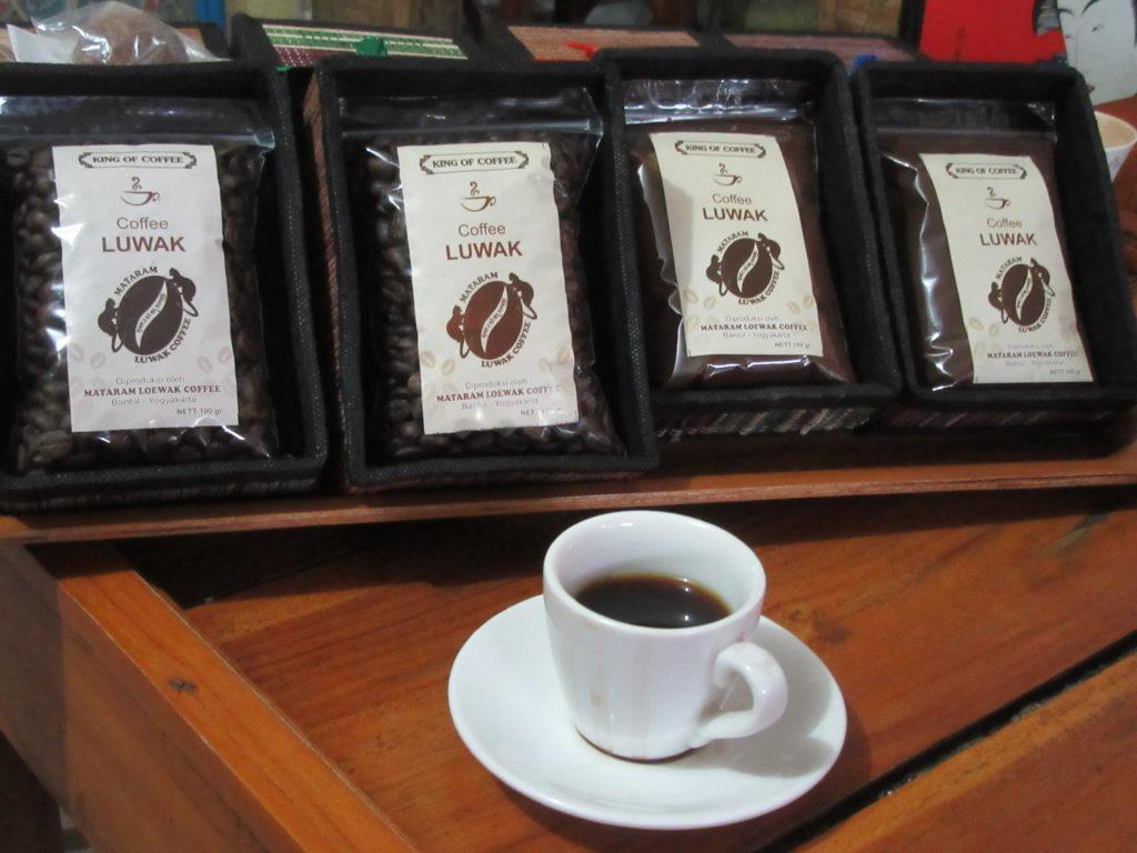 Dégustation café luwak, café le plus cher au monde