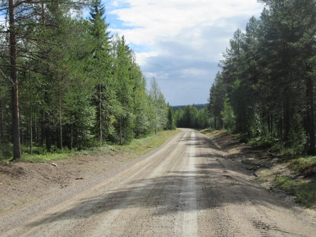 foret Carélie Finlande
