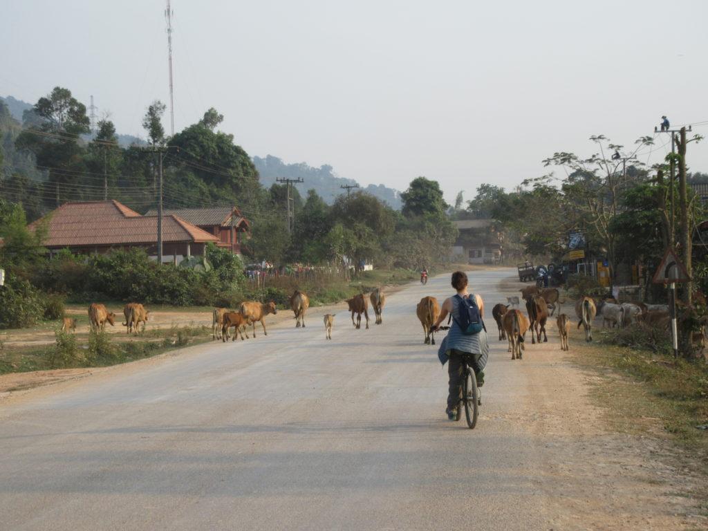 location vélo vang vieng
