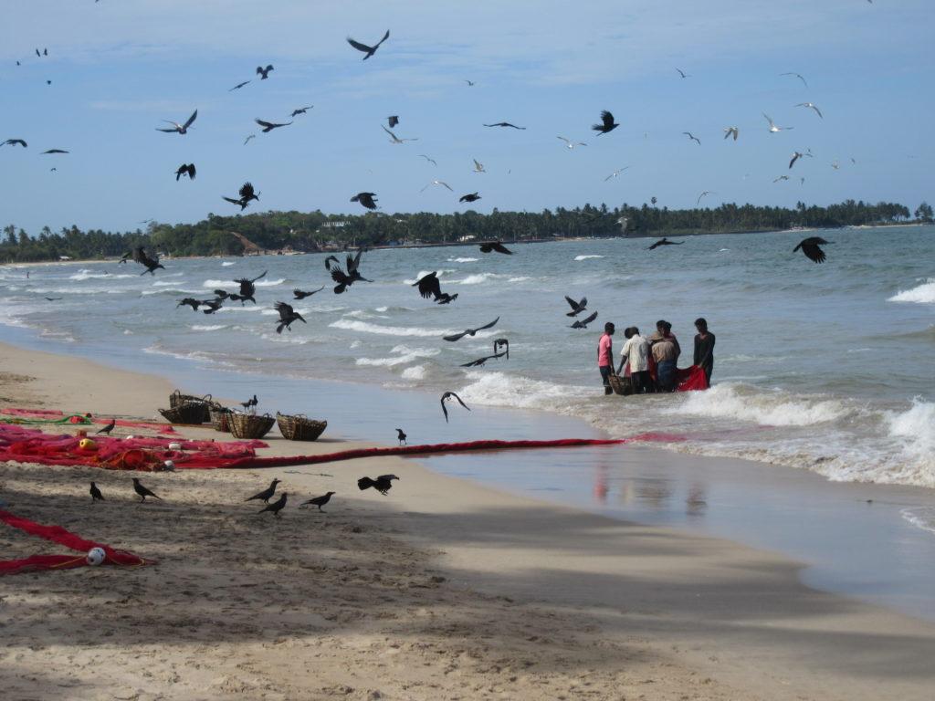Plage au Sri Lanka sur la cote est Uppuveli