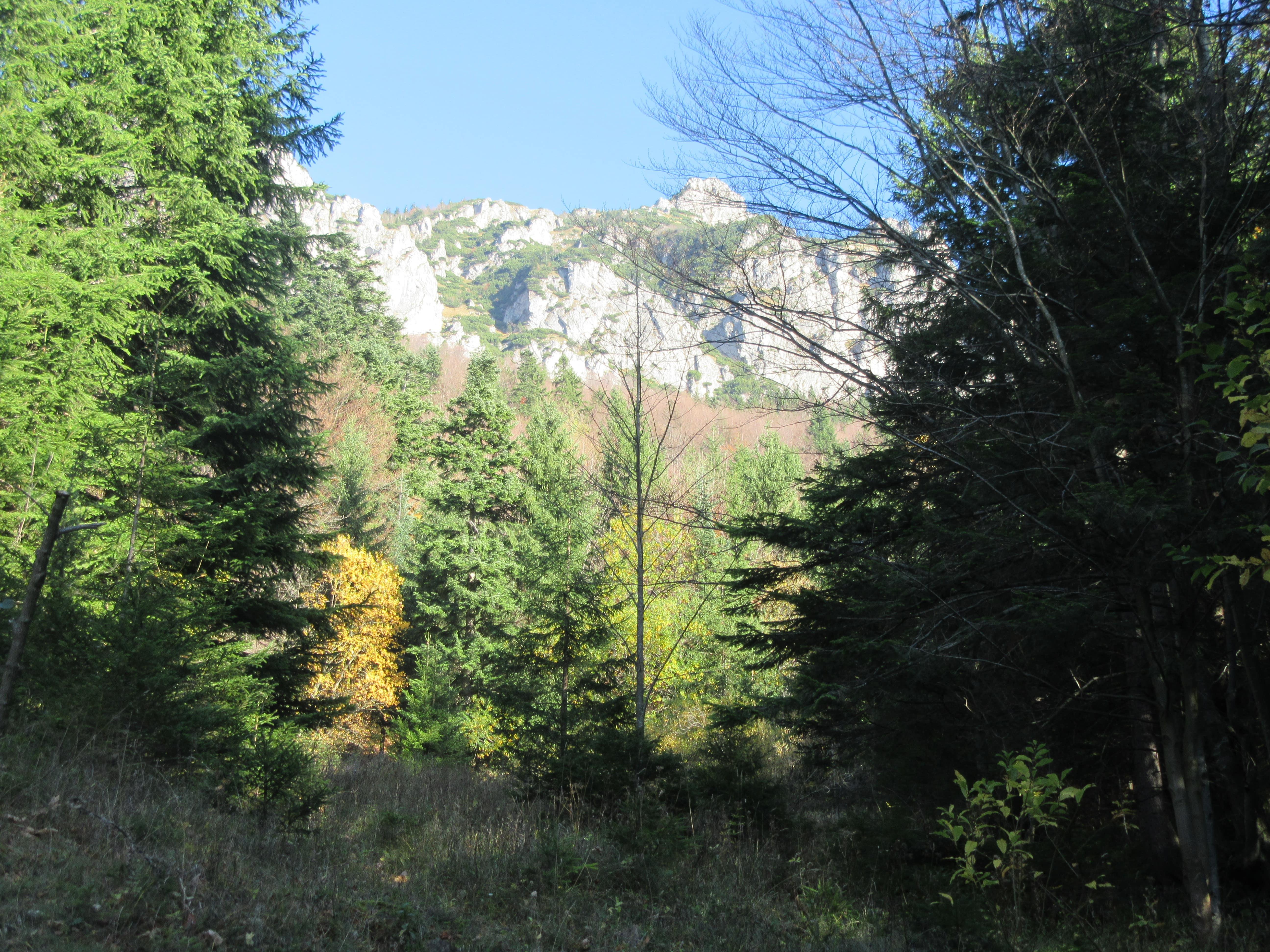 Parc national des Mala Fatra en Slovaquie
