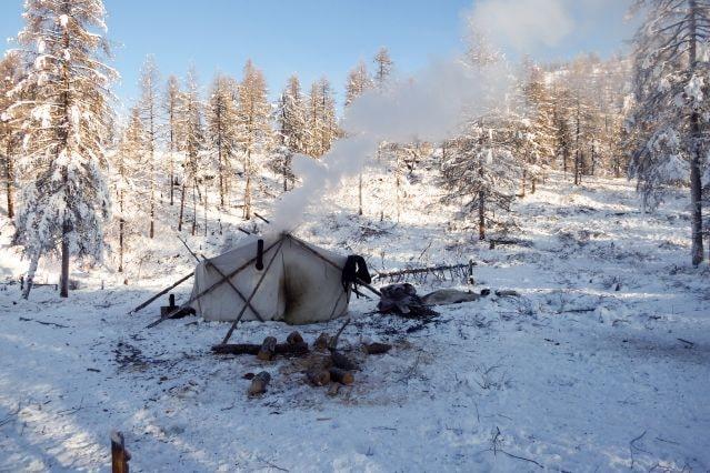 trekking sibérie rencontre eleveur de rennes
