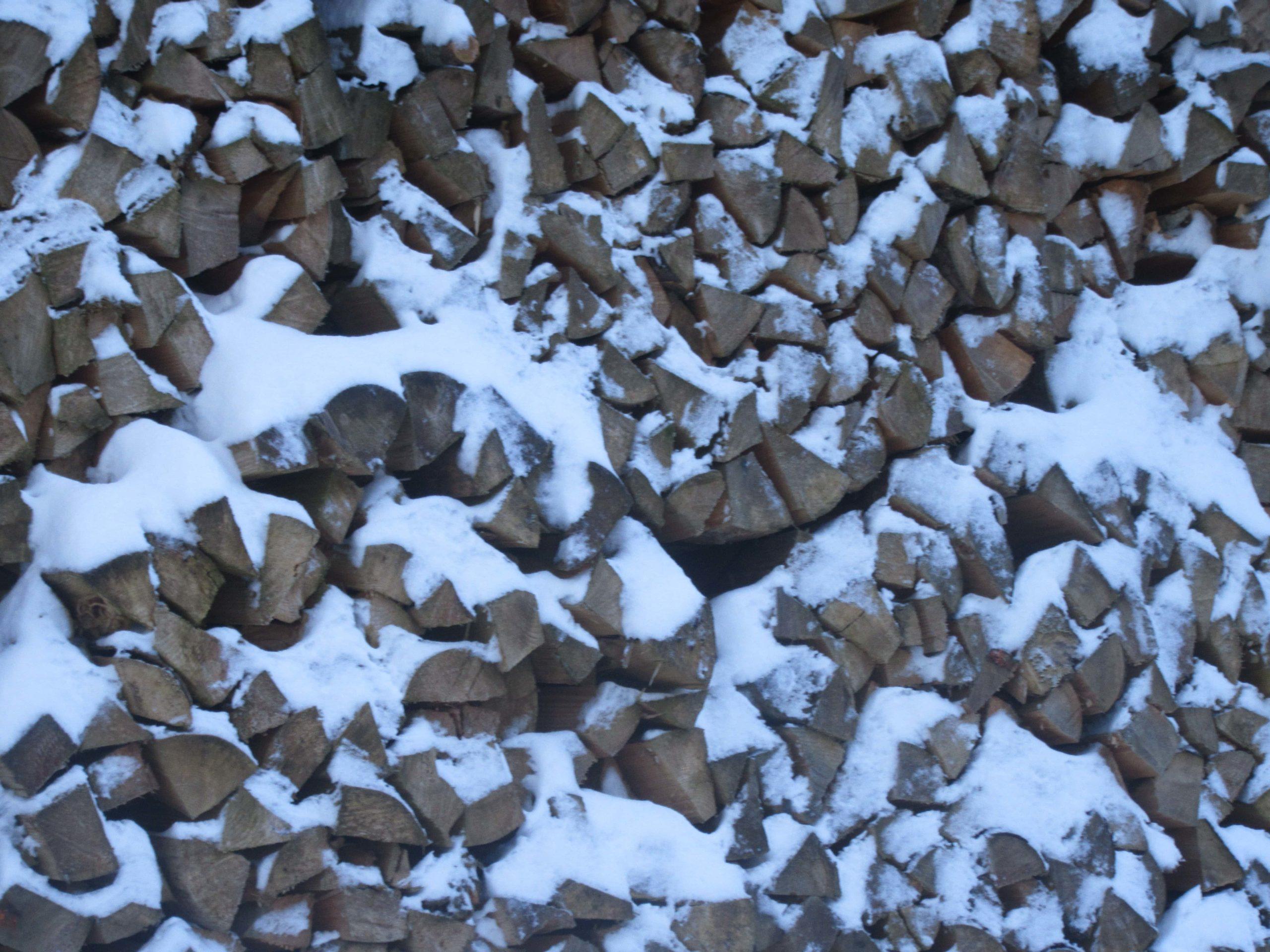 bois sous la neige en Suisse